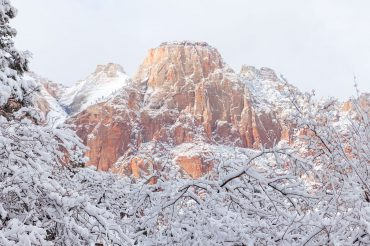 Southwest 2015 – Zion, Images of a Winter Dreamland